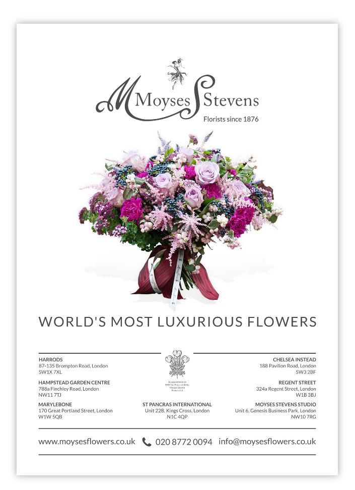 Moyses Stevens Ltd.